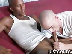 white stud worships large dark dick