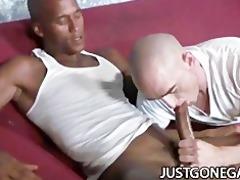 white stud worships large dark dick