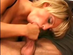 shorthaired golden-haired cougar with massive